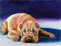 A photo of Puppet the Shar-Pei
