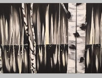 Photo of Birch Trees & Fire Flies at Night
