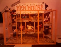 Photo of Changes in the Hen House