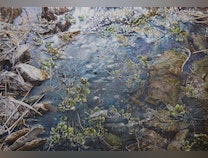 Photo of Water Study-Late March